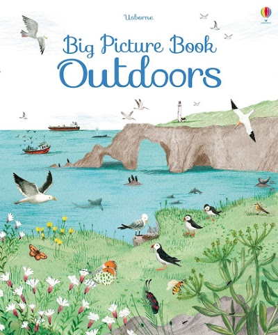 Big Picture Books